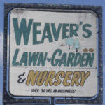 Ever-Evolving Broad Ripple: Highlighting Weaver's Nursery