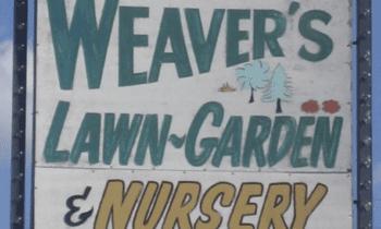 Ever-Evolving Broad Ripple: Highlighting Weaver's Nursery